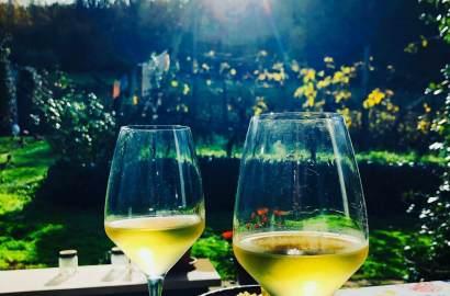 Det er tid for årets siste arbeid med den nye vinen på vingården i Italia. Vi skal ta bort vinens bunnfall. Lurer du på hva det er? Her får du vite mer, og se at årets siste måneder slettes ikke trenger være verken kalde eller grå. God vin kommer i små tønner, er et italiensk ordtak.