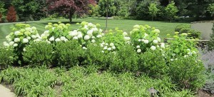 Landscape Architects Chester County