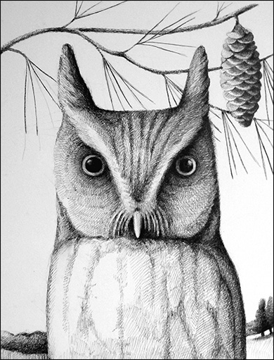 Great Horned Owl, Anne Hunter, Illustrator