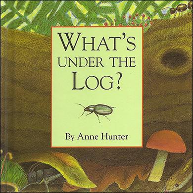Children's Book - What's Under the Log?