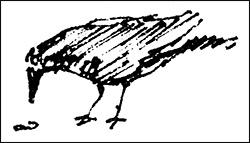 logobird250