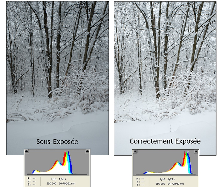Hiver d'hiver : bien exposer ses photos d'hiver