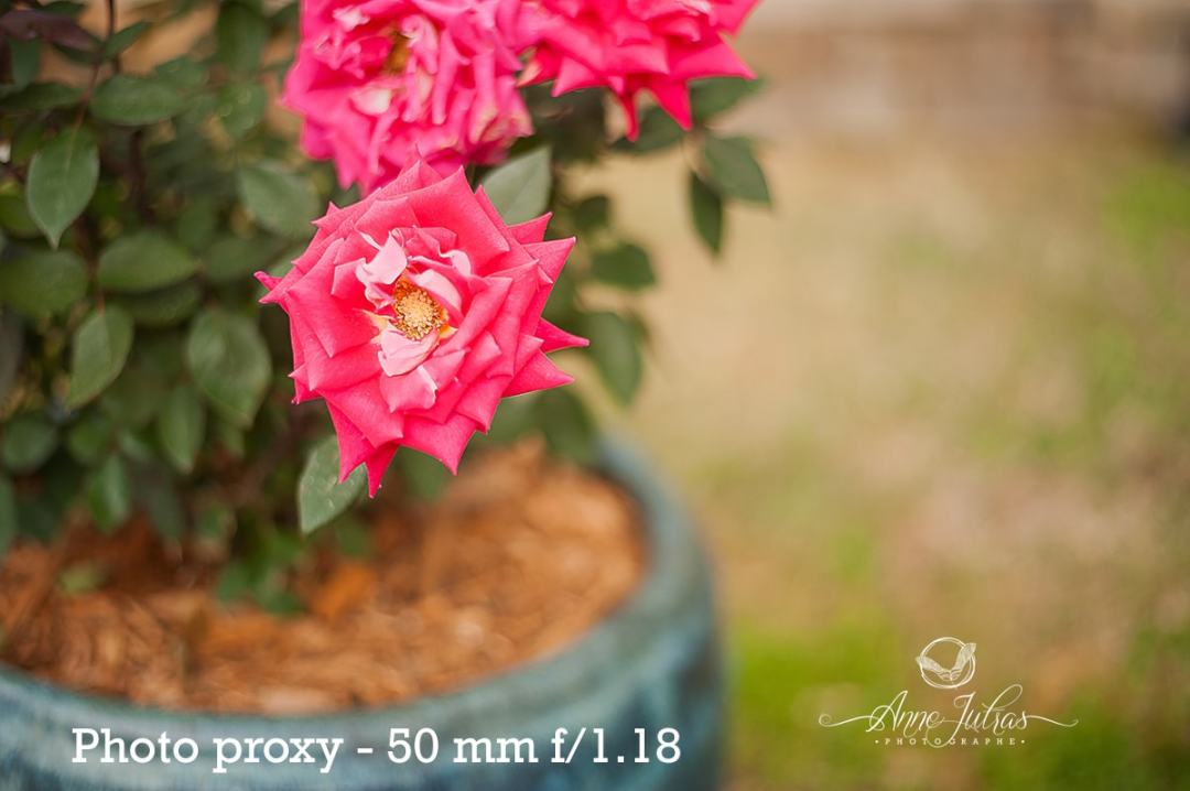Photo proxy 50 mm