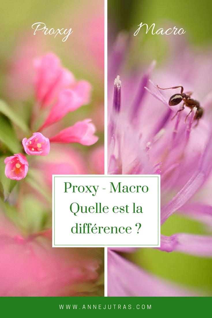 Macro, Proxy - Quelle est la différence ?