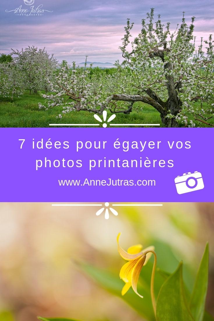 7 idées pour égayer vos photos printanières, par Anne Jutras, artiste photographe | Conseils Photo | Photos créatives | Photographie