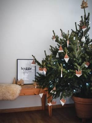 Kerstboom - annekevandevoorde.com