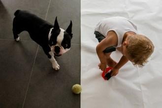 day in the life thuis kinderfotografie spontaan huisdieren