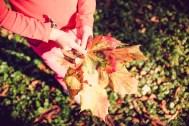 herfst (1 van 1)-24