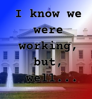 Pull Quote from romantic fiction serial White House Rhapsody: I know we were working, but, well...