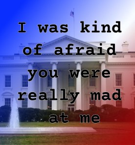 Pull Quote from romantic fiction serial White House Rhapsody: I was kind of afraid you were really mad at me