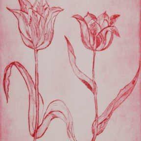 Les Tulipes Etching - Limited Edition Print