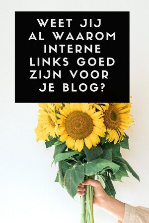 interne link optimaliseren