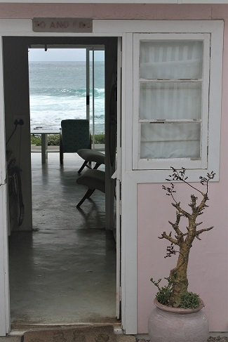 The Miracle Story of a Beautiful Pink Beach Cottage