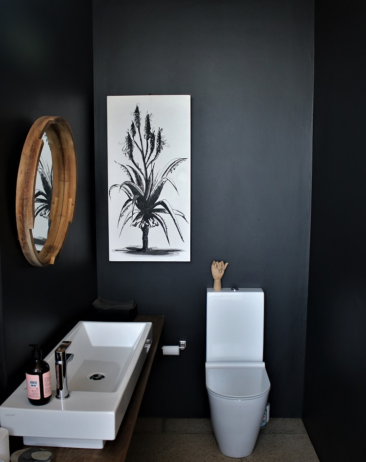 Paint tips -Guest loo painted black