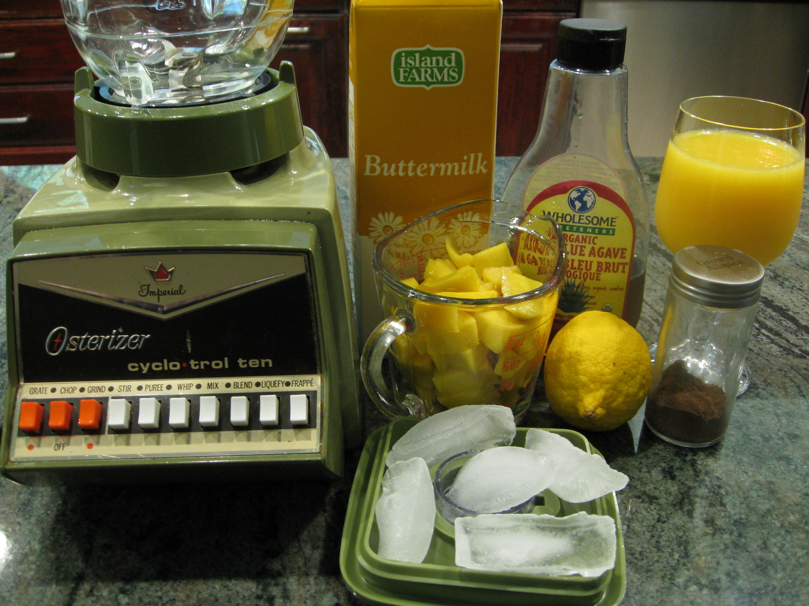 Ingredients for the Mango Shake (and our ancient blender!)