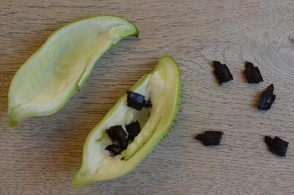 Cyclanthera pedata   Olijfkomkommer met zaden - Achoccha with seed