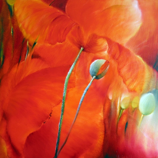 painting of poppies