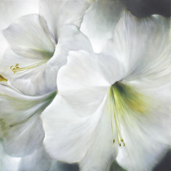painting of white amaryllis