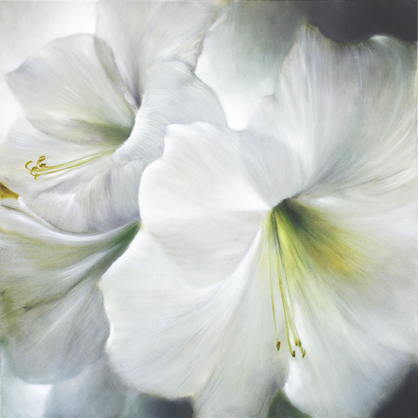 painting of white amaryllis