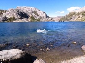 Swimming in Garnet