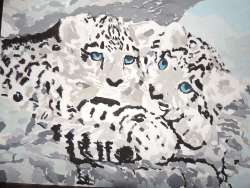cuddly-snow-leopards-11x14-artboard