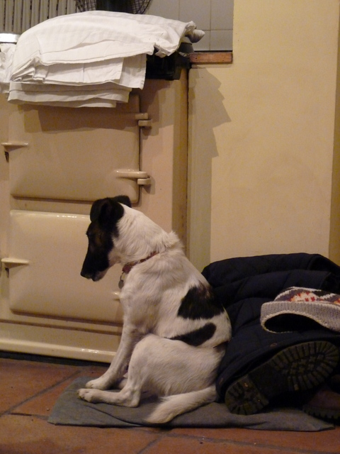 morris by the aga