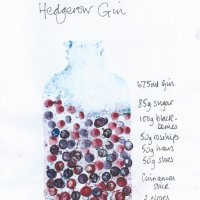 making hedgerow gin