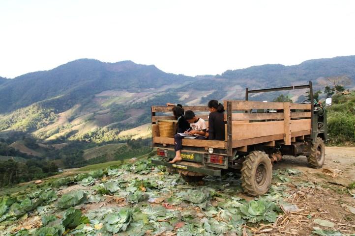 キャベツ畑で少数民族とふれあう。真ん中の男の子は今日の売り上げを計算していた。