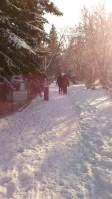 Walks around the park