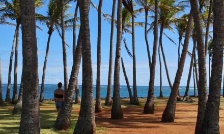 Kauai – quelques attraits de la côte Est et Sud