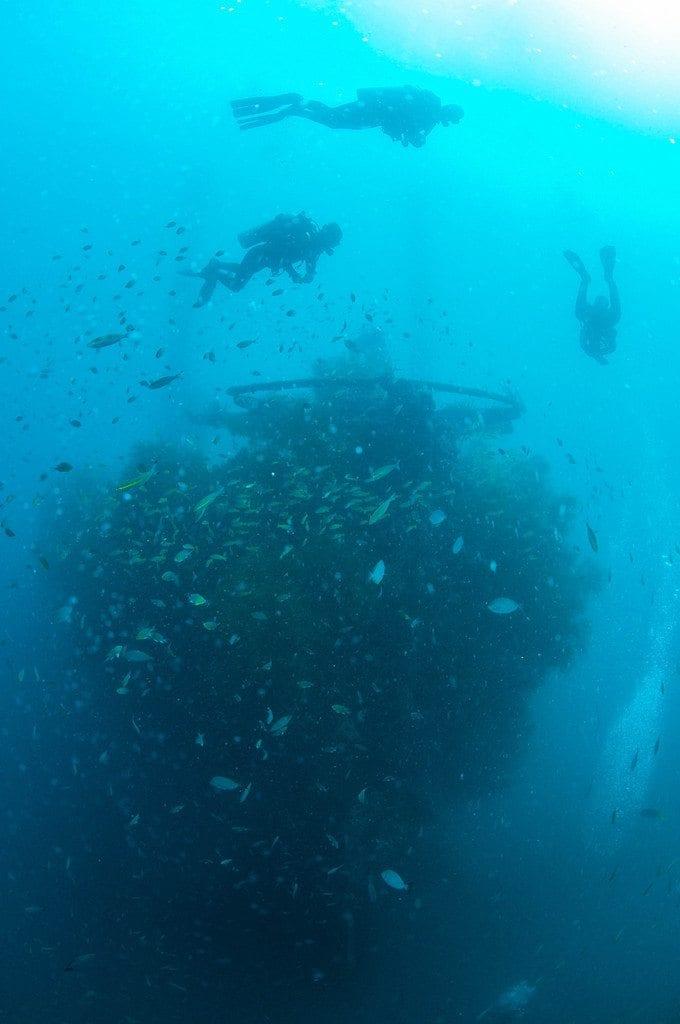 ob_9dbb84_nic-8498-proue-1er-bateau-1