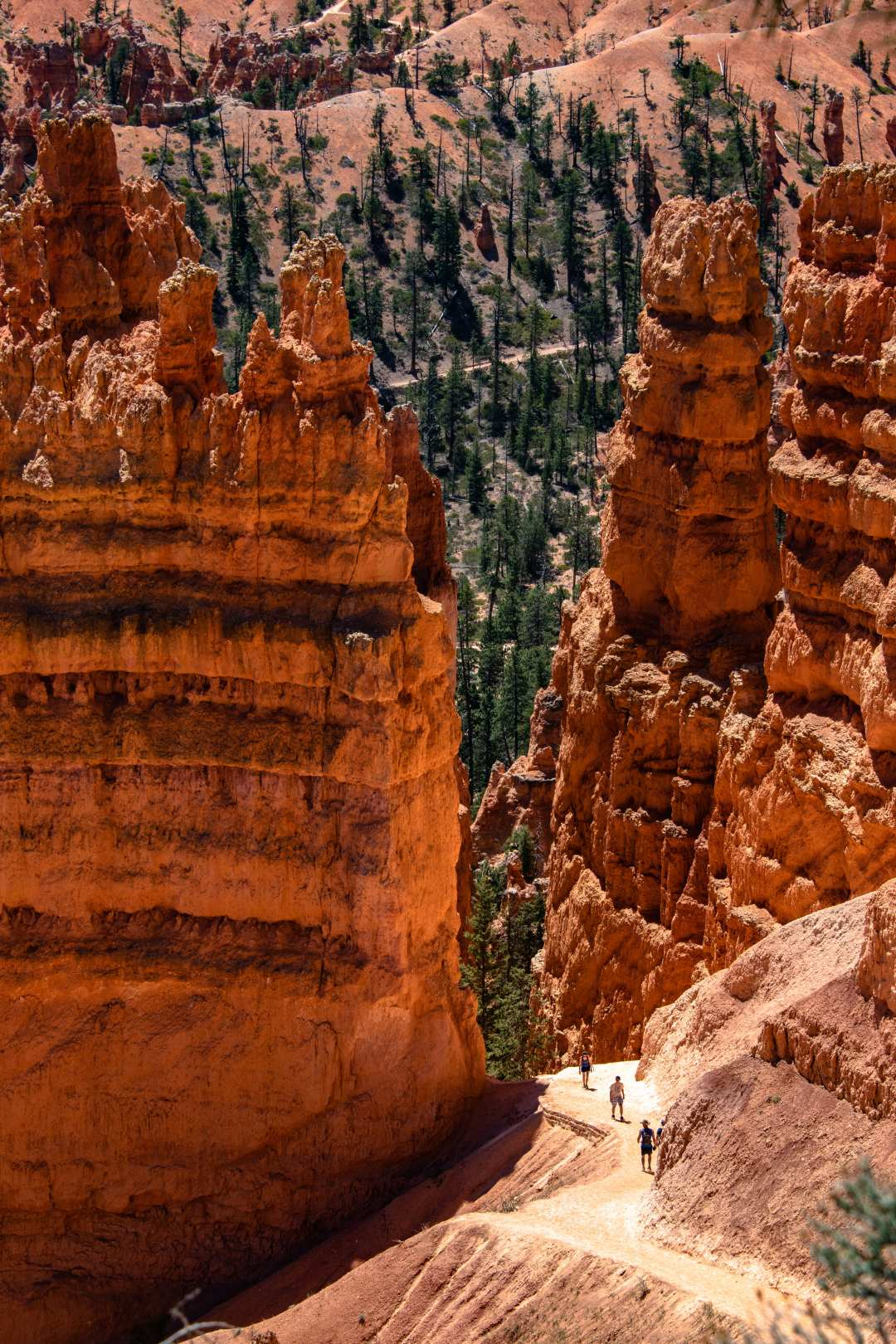 Bryce Canyon - Annie Explore