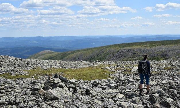 4 sentiers à découvrir dans le parc de la Gaspésie