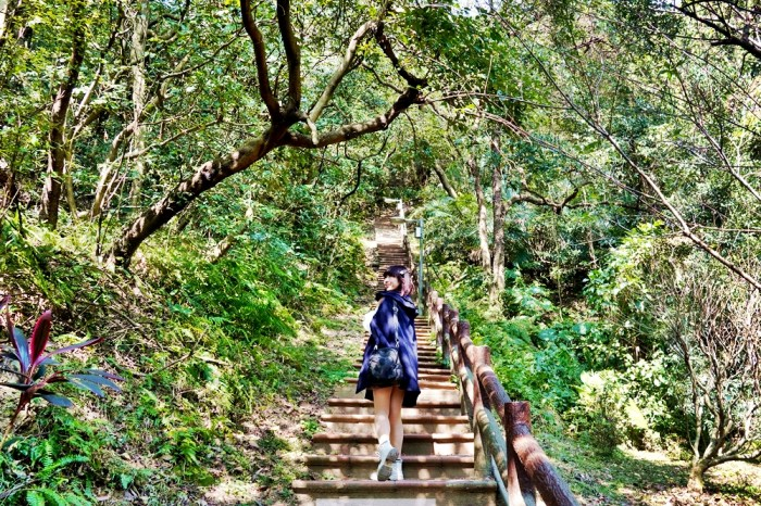 [台北 鶯歌石步道]穿越過原始況味林徑  充滿仙氣的森林系步道