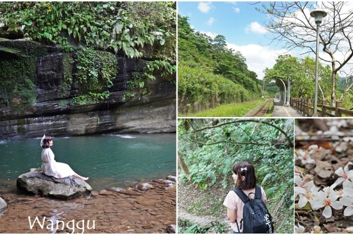 [新北  嶺腳寮山步道] 望古車站與嶺腳間的山谷仙境 夢幻綠色仙瀑 邂逅白色桐花秘境