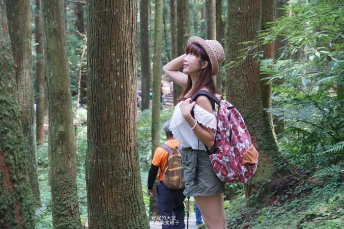 [北台灣森林系景點]走吧~~來當一日森林系女孩