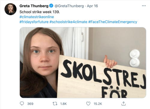 A screenshot of Thunberg's tweet with a recent picture of herself