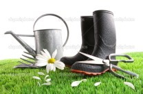 depositphotos_3250482-Boots-with-watering-can-and-daisy-in-grass