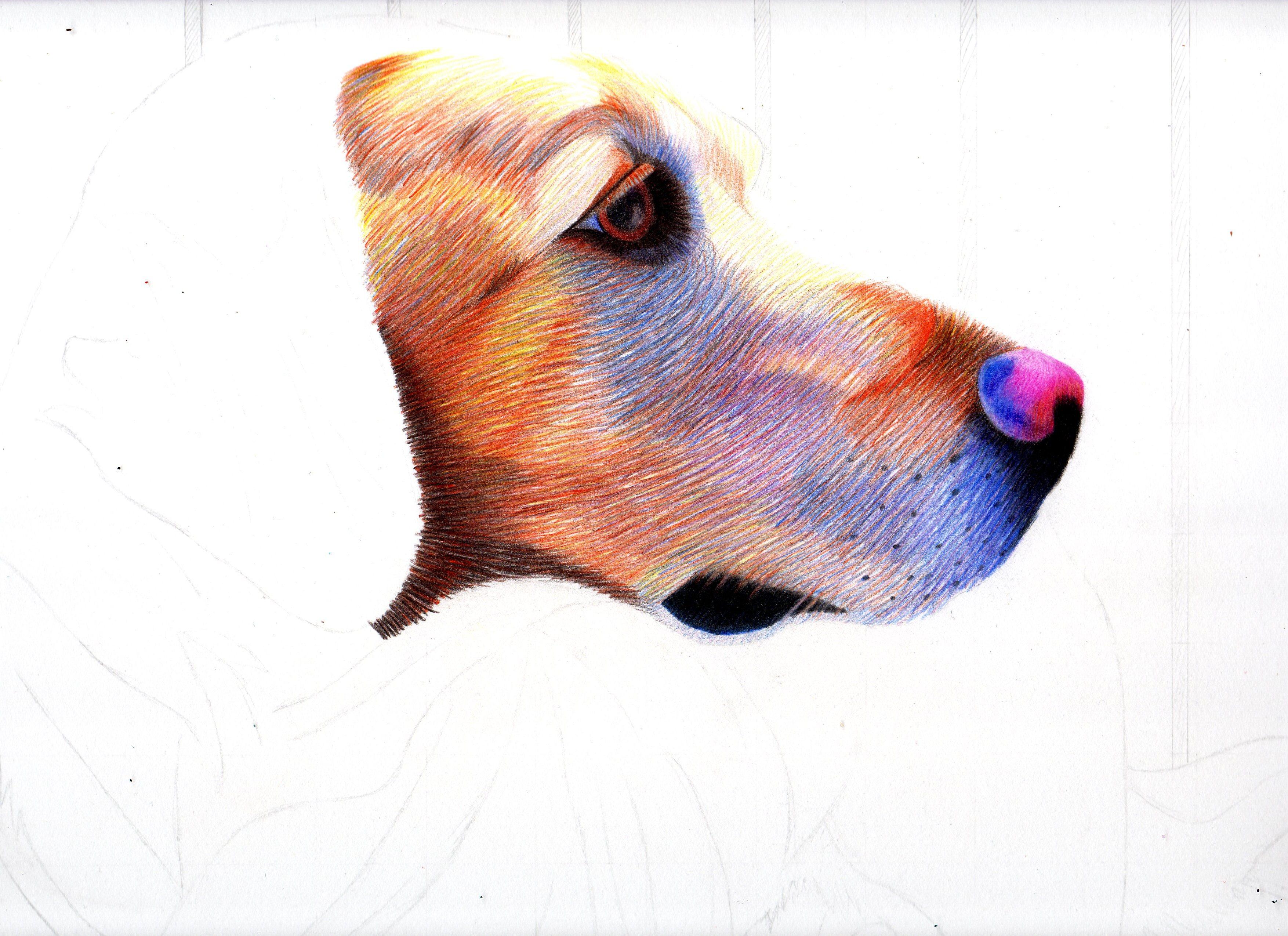 Layering Colored Pencils Take 2