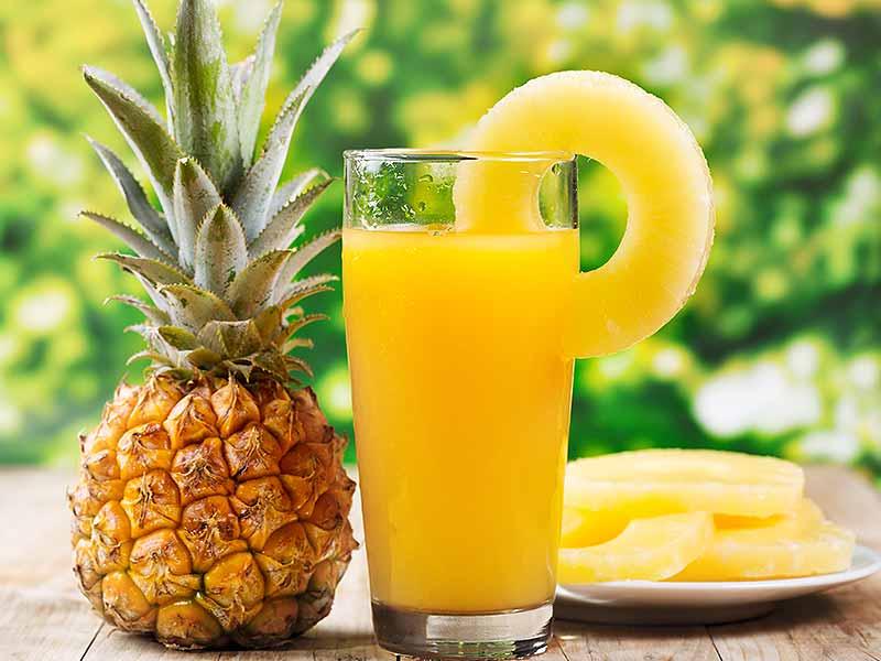 Buy-canned-pineapple-vietnam