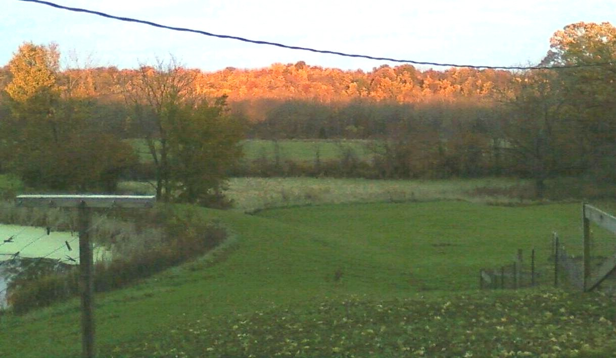 October Late Evening