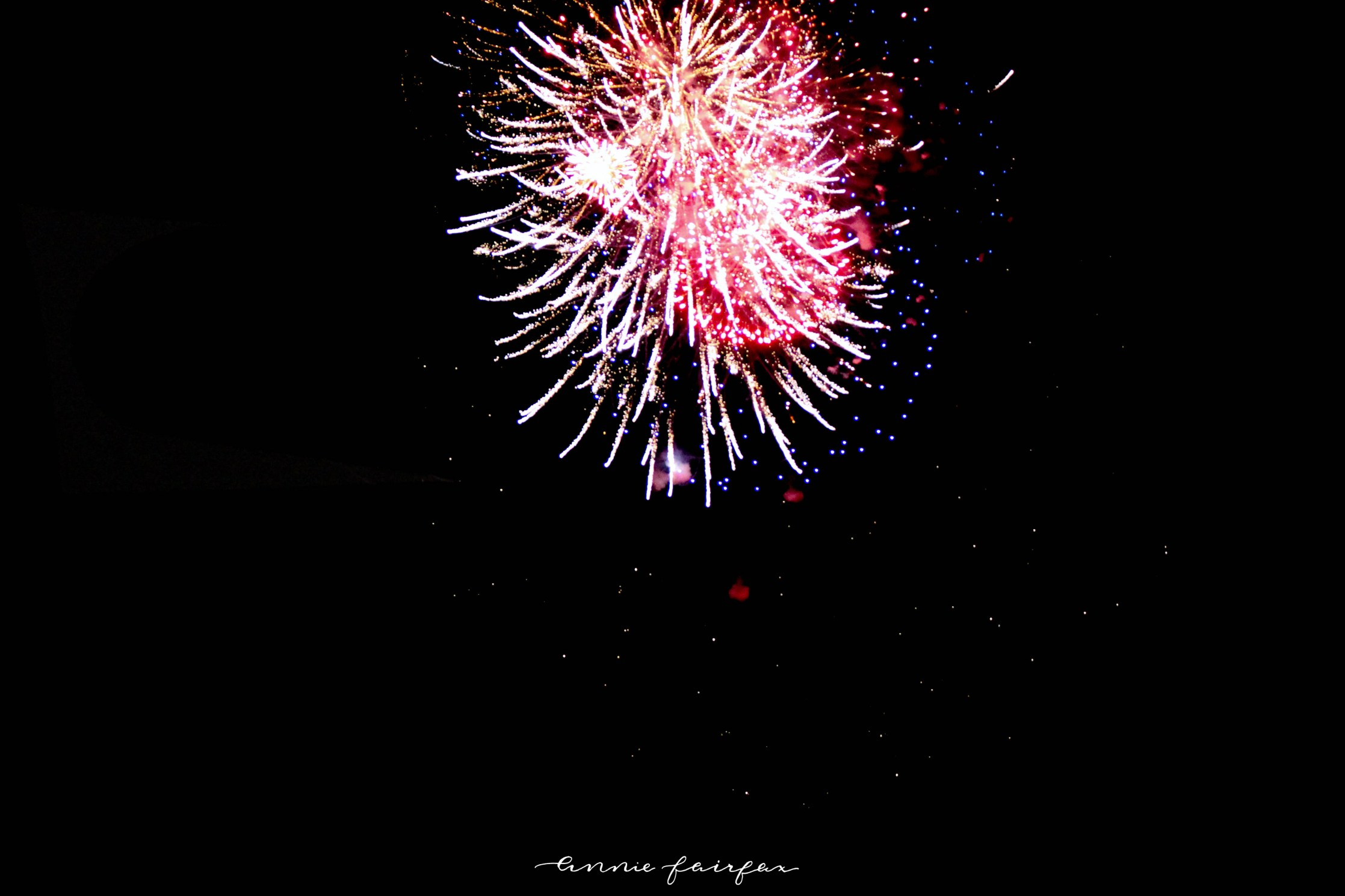 Tulip Time in Holland Mi Fireworks Display