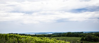 The Complete Traveler's Guide to Traverse City, MI