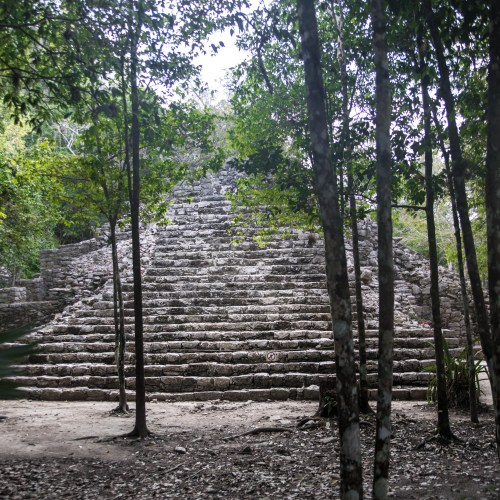 Exploring Cobá: The Ultimate Travel Guide