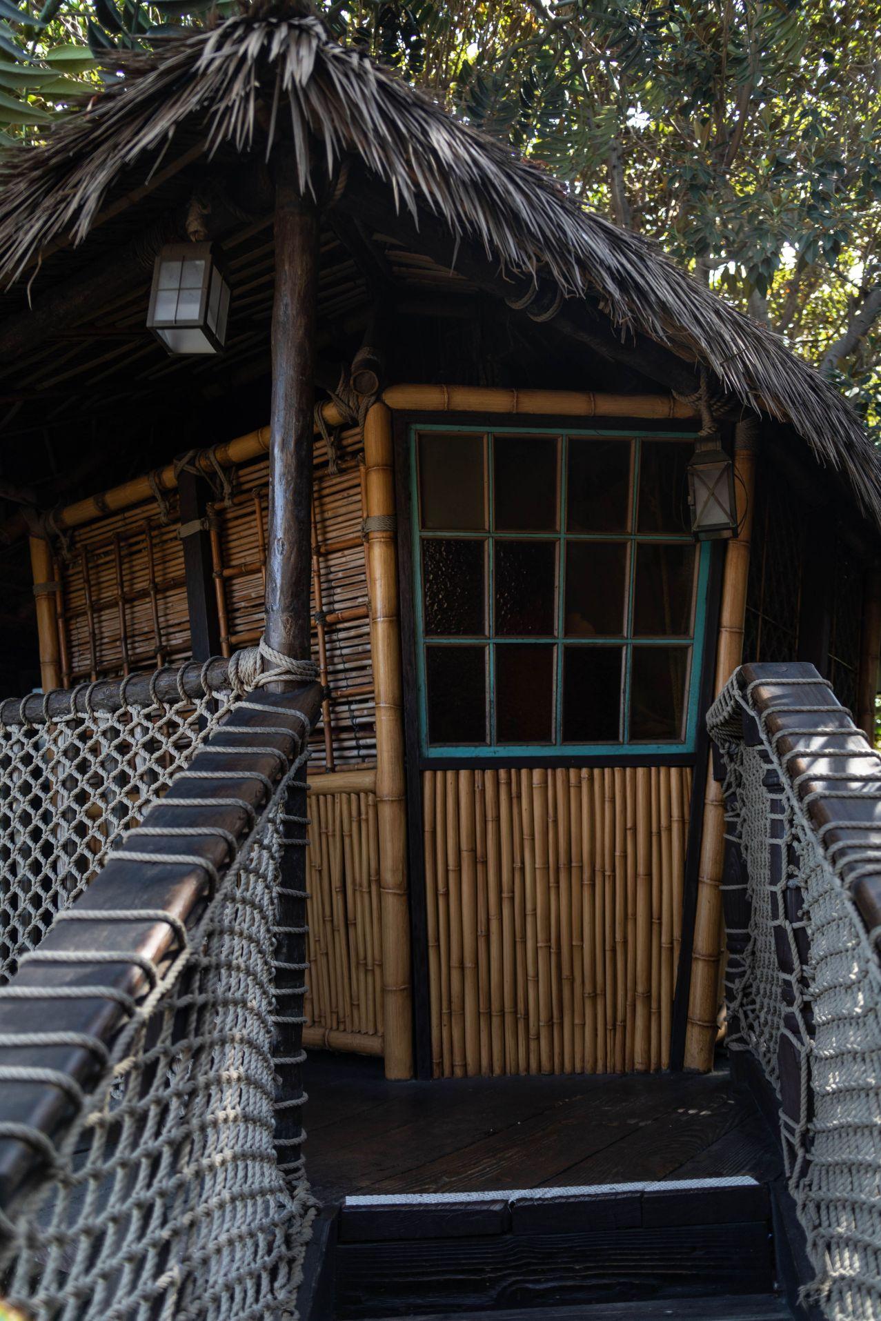 Disneyland The Ultimate Travel Guide by Annie Fairfax Disneyland Travel Tips Advice Adventureland Tarzan's Treehouse