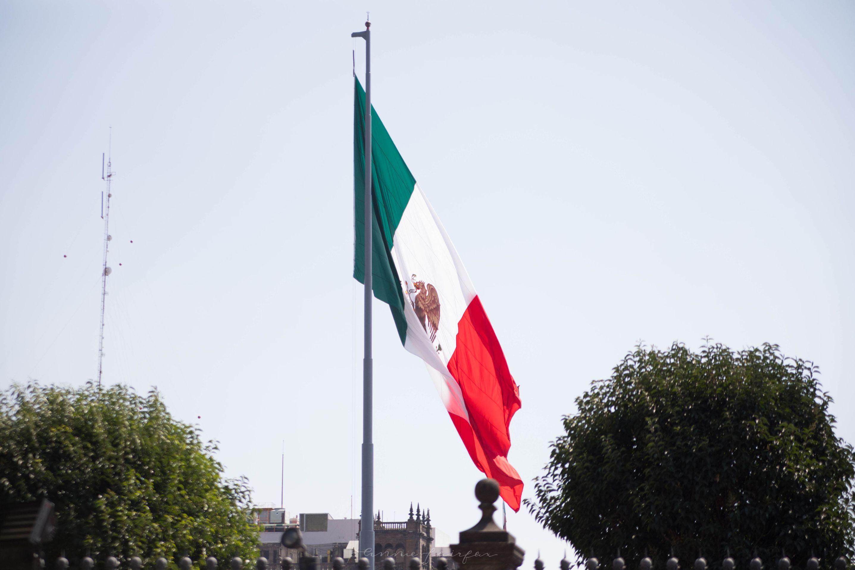 Mexican Flag in Mexico City, Mexico