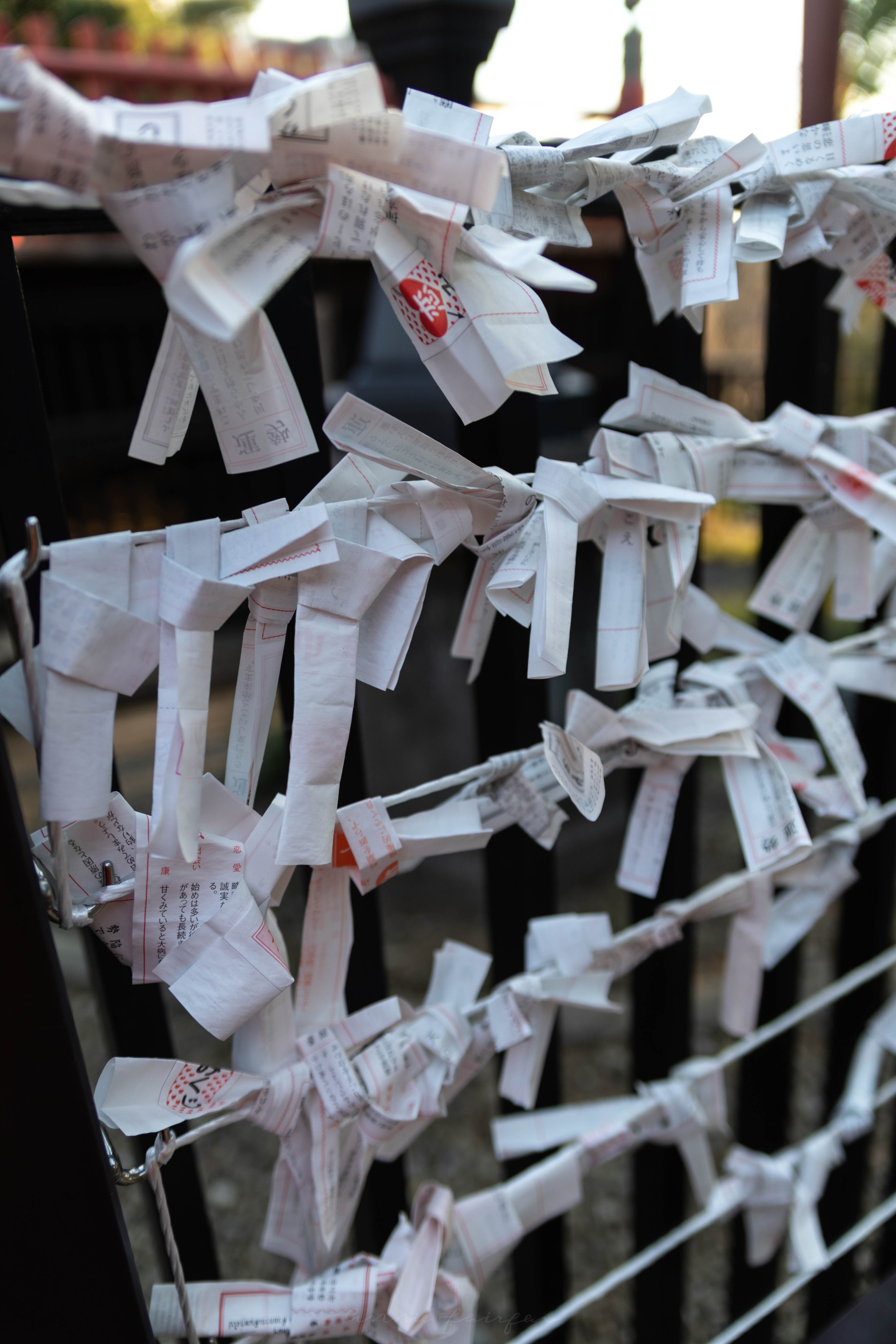 Paper Wishes in Tokyo, Japan by Annie Fairfax