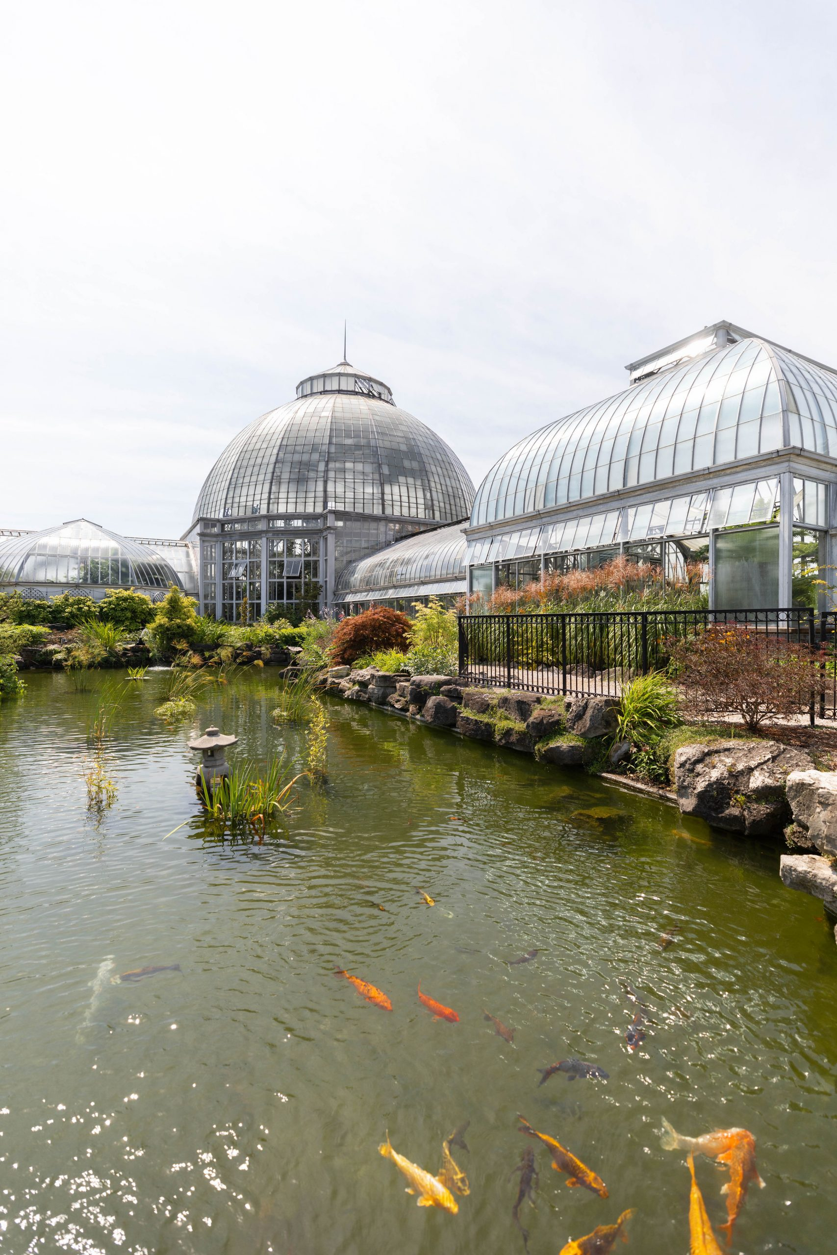 Belle Isle Tropical Conservatory and Aquarium in Detroit Michigan Photographed by Annie Fairfax