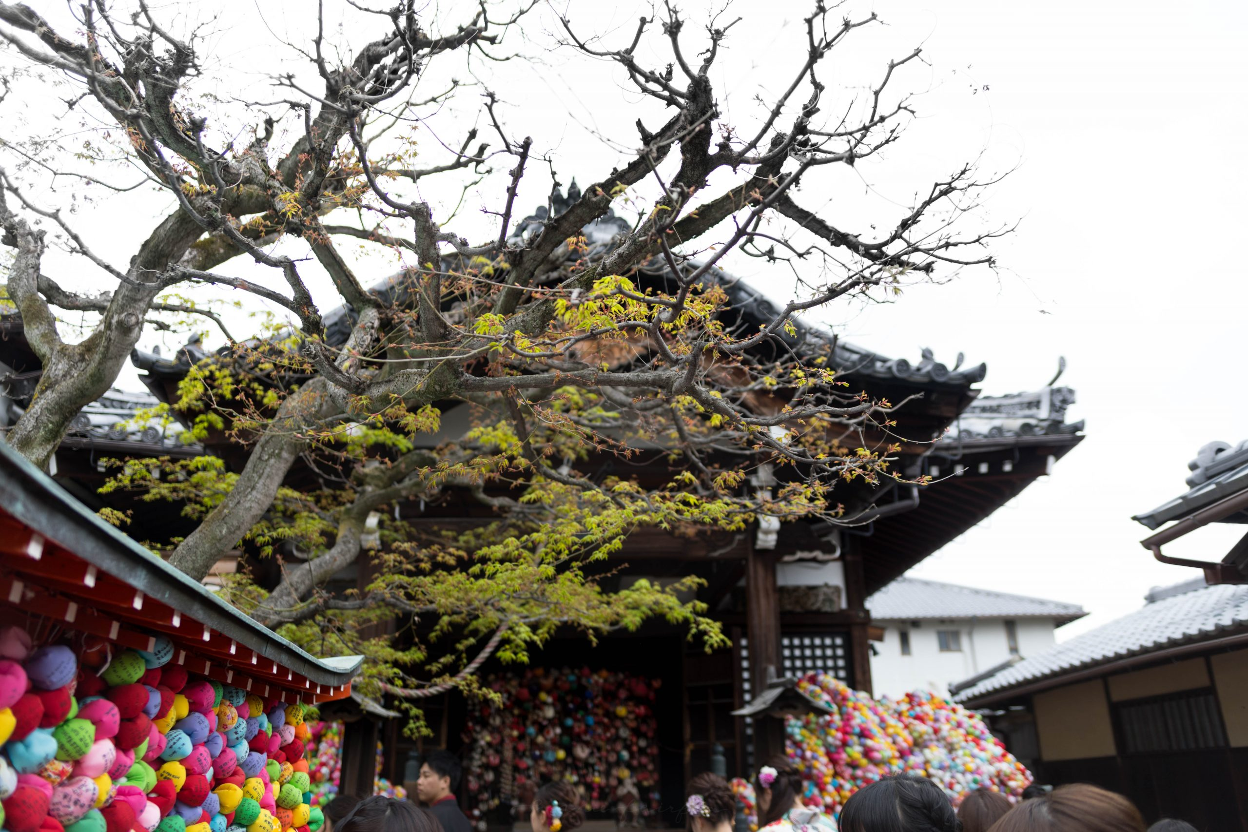 Colorful Ball Temple Yasaka Koshin-Do Temple in Kyoto, Japan's Higashiyama District by Annie Fairfax