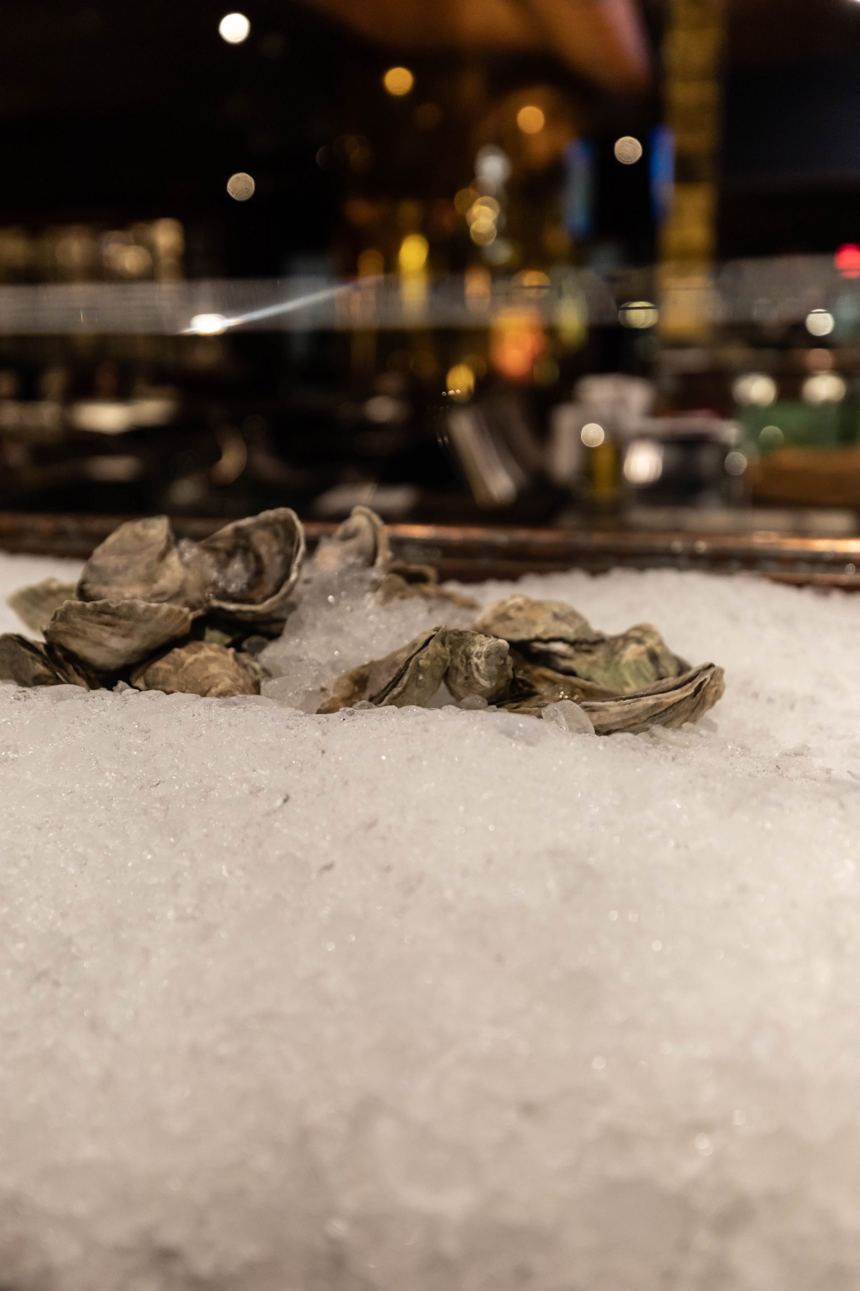 Oyster Bar at Joe Muer Seafood in Detroit Inside the GW Renaissance Center Fine Dining Michigan Luxury Restaurants of the World